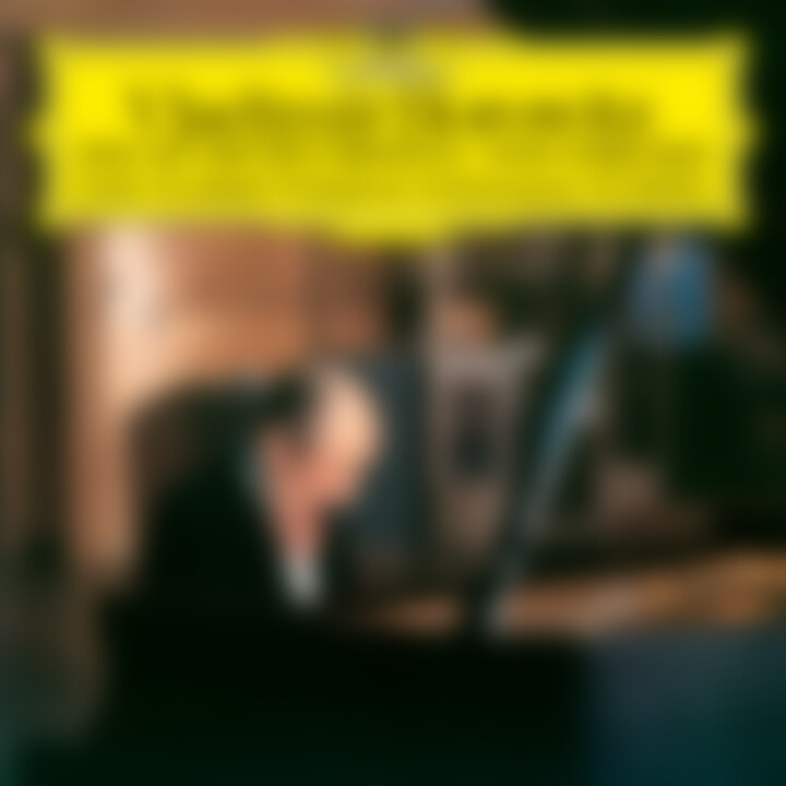 Vladimir Horowitz: The Studio Recordings · New York 1985