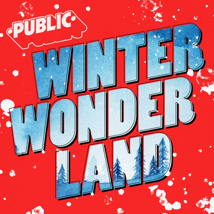 PUBLIC - Winter Wonderland Cover