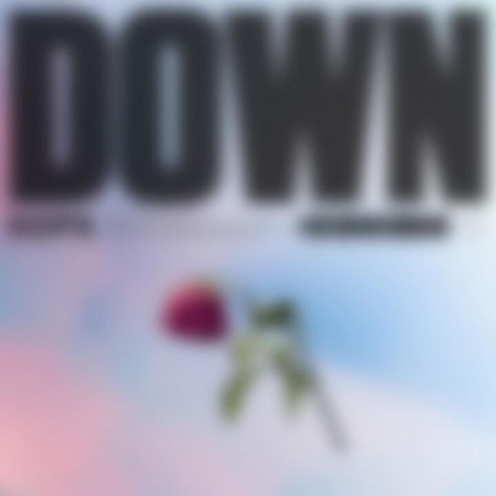 KOPS - Down Cover