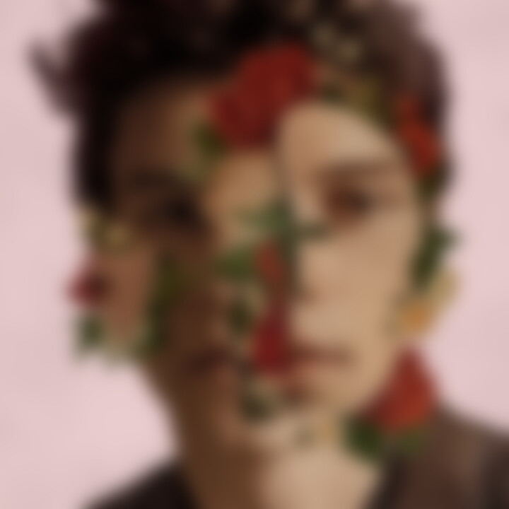 Shawn Mendes Deluxe Re-Issue