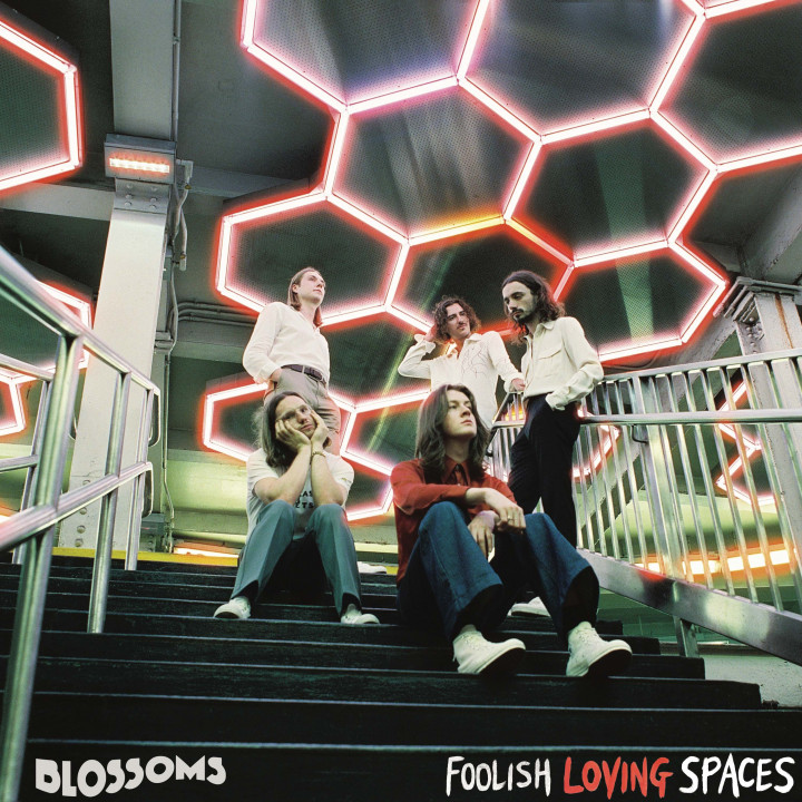 Blossoms - Foolish Loving Spaces