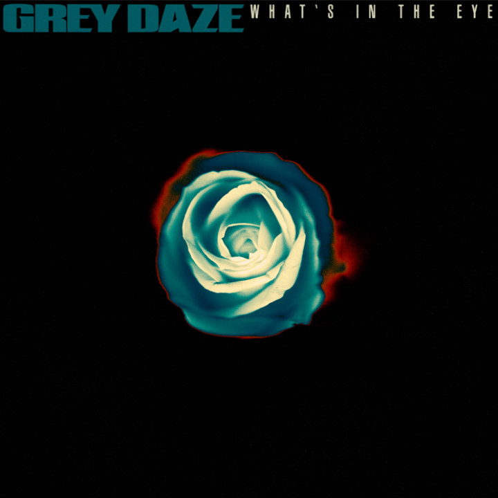 Grey Daze What's In The Eye
