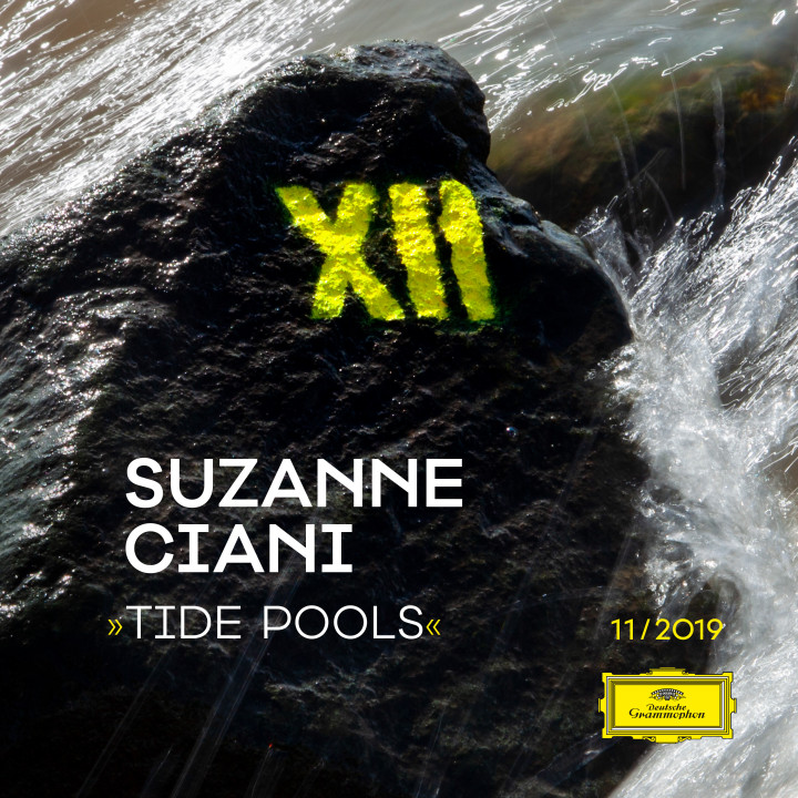 Project XII - 2019 / Susanne Ciani - Tide Pools