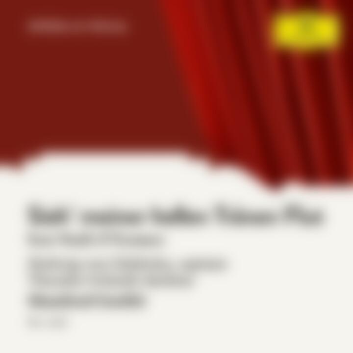 Verdi: Il Trovatore: Sieh' meiner hellen Tränen Flut