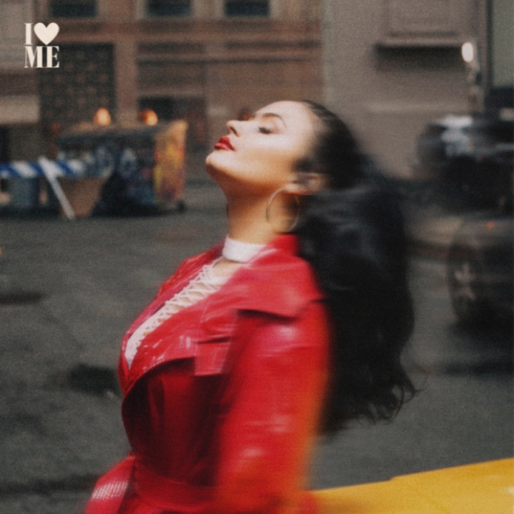 Demi Lovato I Love Me