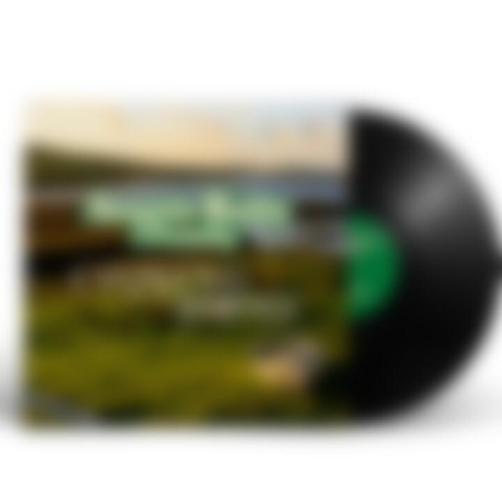 Angelo Kelly & Family Vinyl mit Signatur Cover