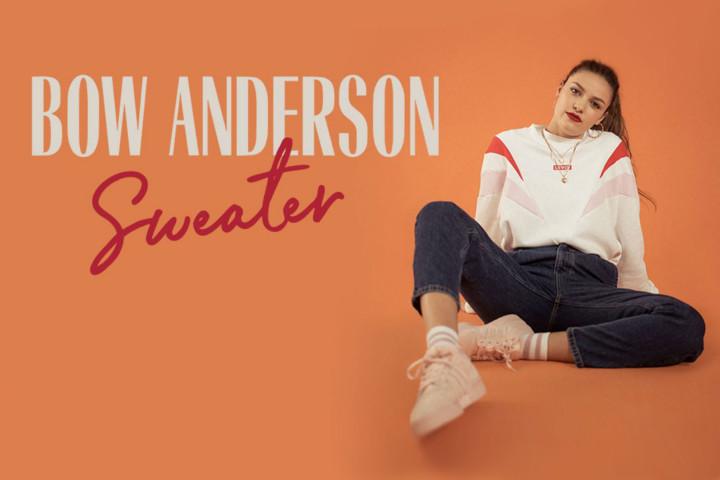 bow anderson header