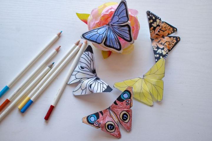 Basteln Schmetterling Newsbild