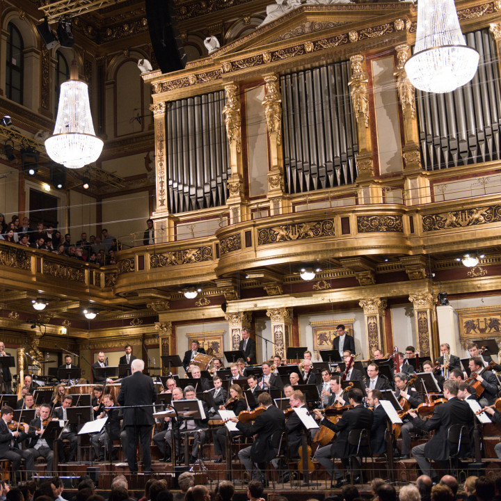 John Williams, Wiener Philharmoniker