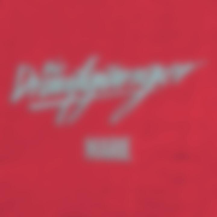 Die Draufgänger - Marie (Single) - Cover