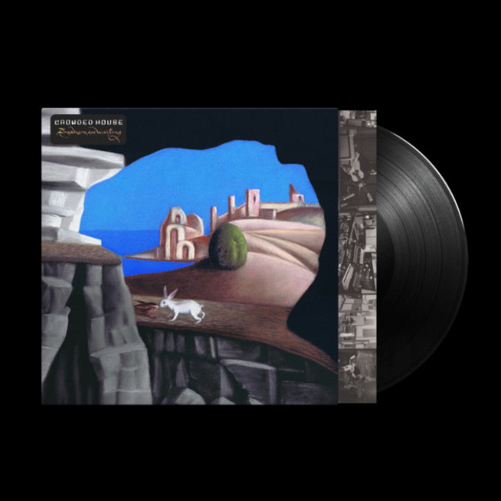 Dreamers Are Waiting Black LP