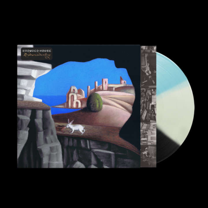 Dreamers Are Waiting Bicolor LP