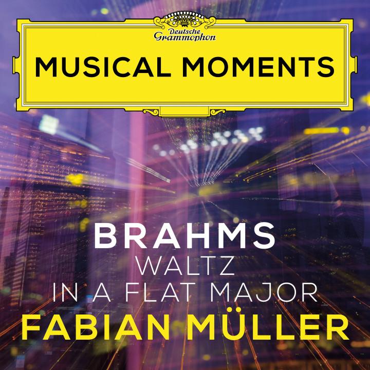 Fabian Müller - Brahms: 16 Waltzes, Op. 39: No. 15 in A Flat Major Cover