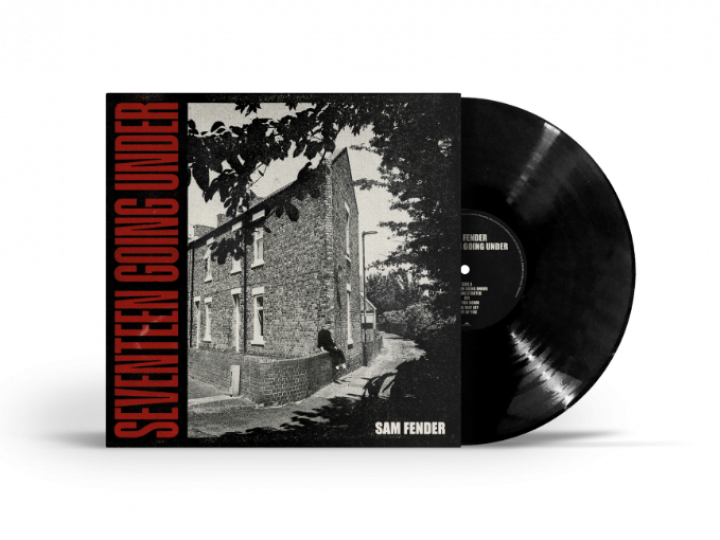 Seventeen Going Under Standard Vinyl