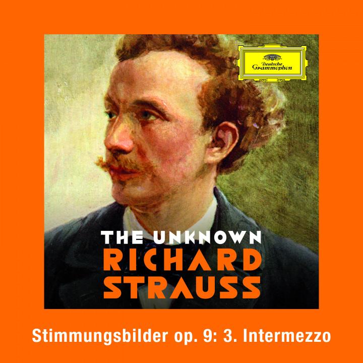 Strauss: Stimmungsbilder, Op. 9: No. 3 Intermezzo Cover