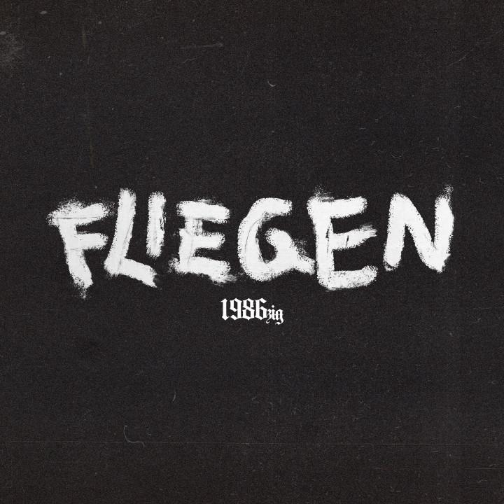 1986zig Fliegen