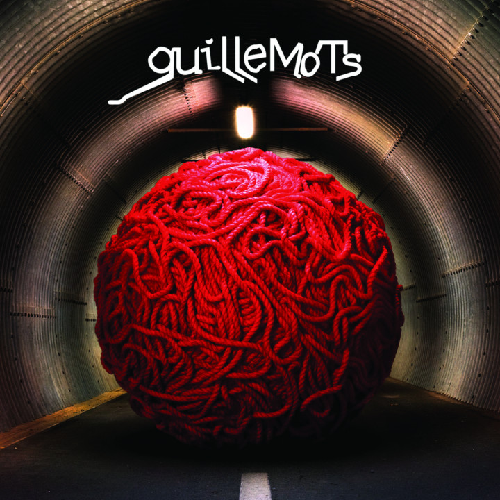 guillemots_cover 2008