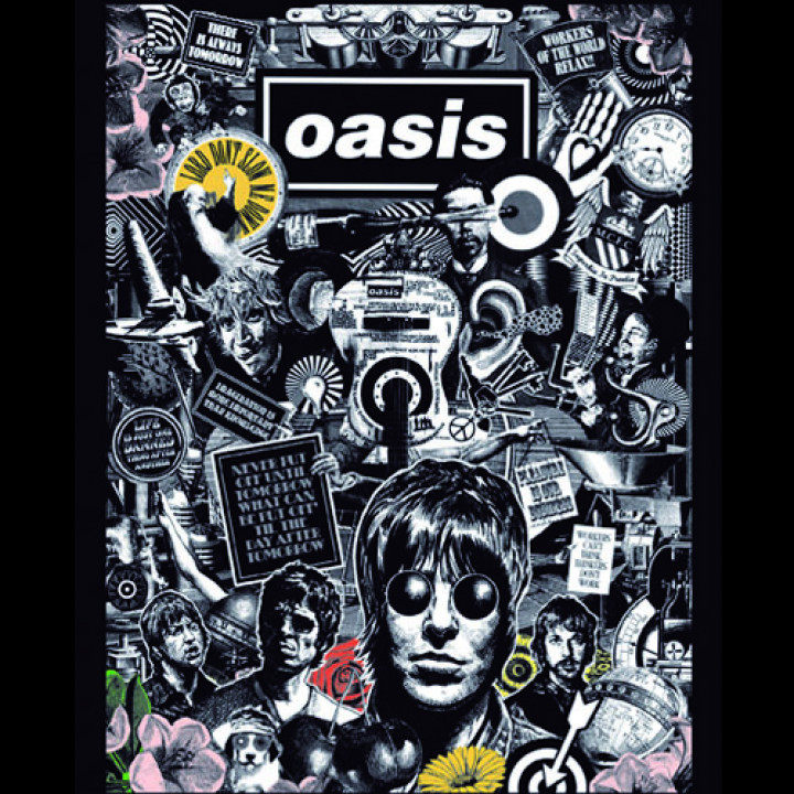 Oasis - Lord Don´t Slow Me Down DVD