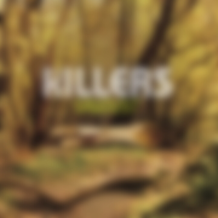 the killers sawdust cover 2007
