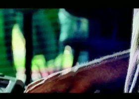 Sérgio Mendes, Encanto Albumdokumentation