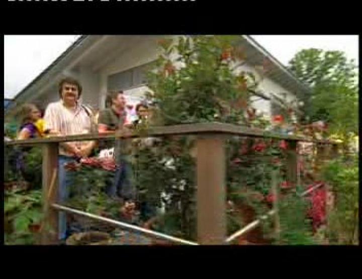 Amy Macdonald- ZDF Fernsehgarten