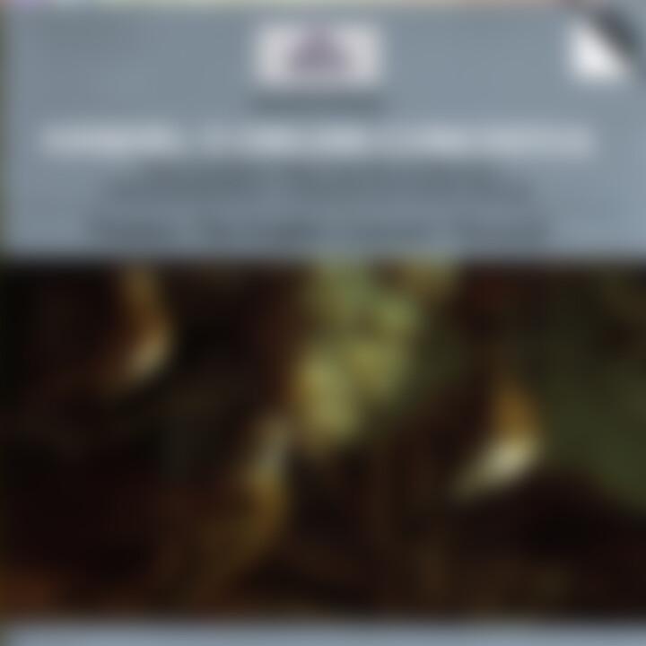 Handel: 5 Organ Concertos 0028944730025