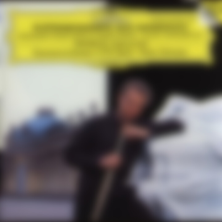 Flute Concertos 0028943989523